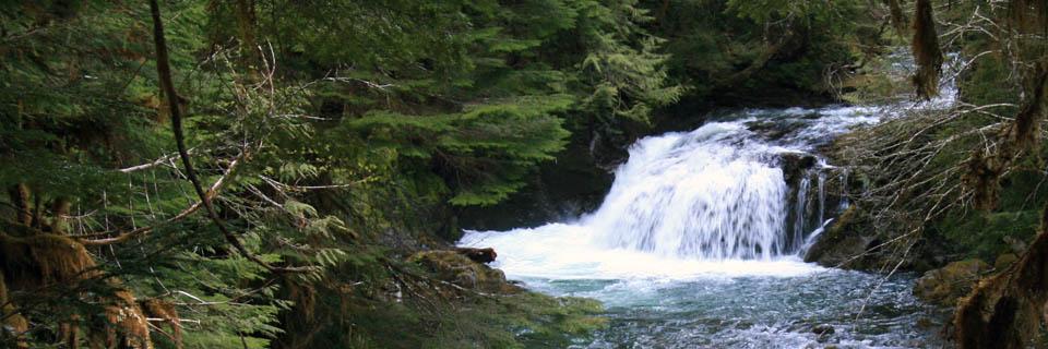 Opal Creek Header