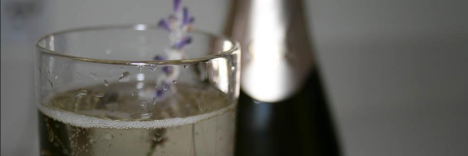 lavender_champagne_header