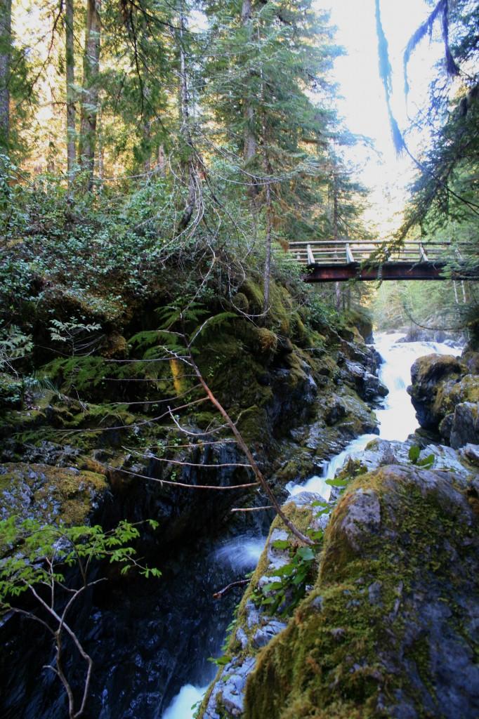 bridge over Opal Creek