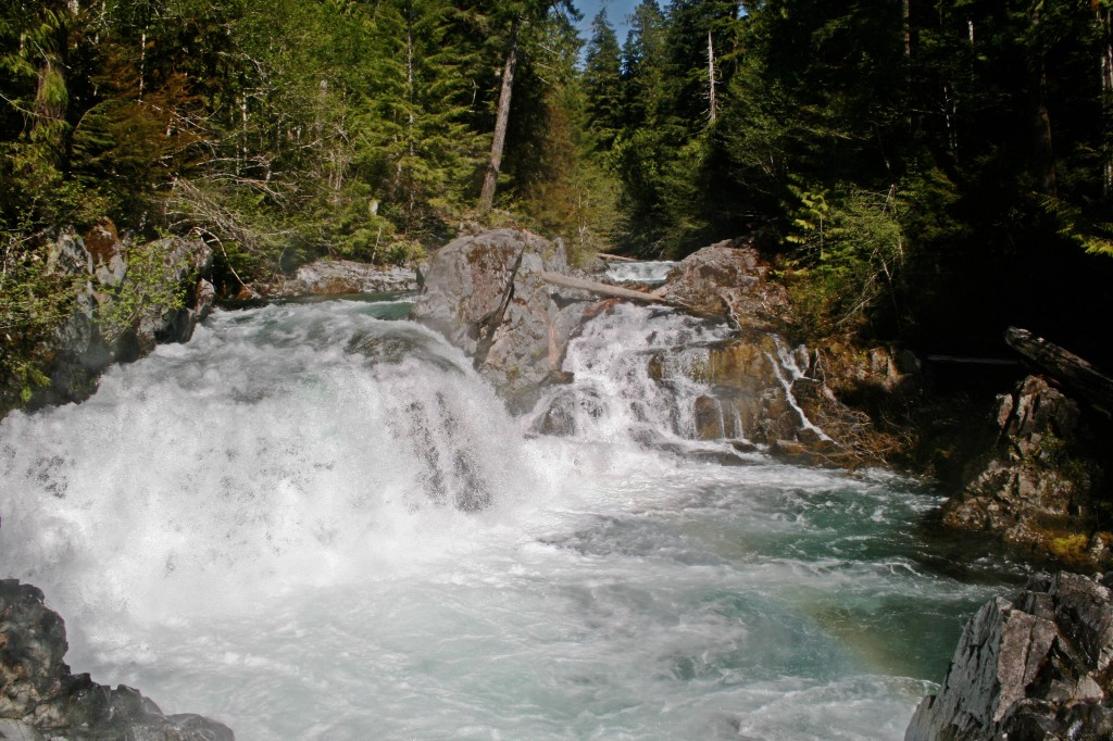 Opal Creek Hike: Little North Santiam River and Sawmill Falls