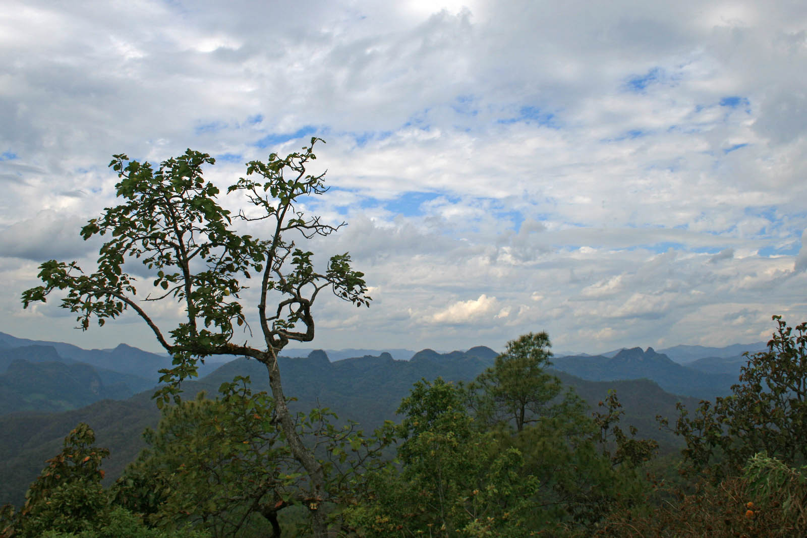 mae hong son loop vista