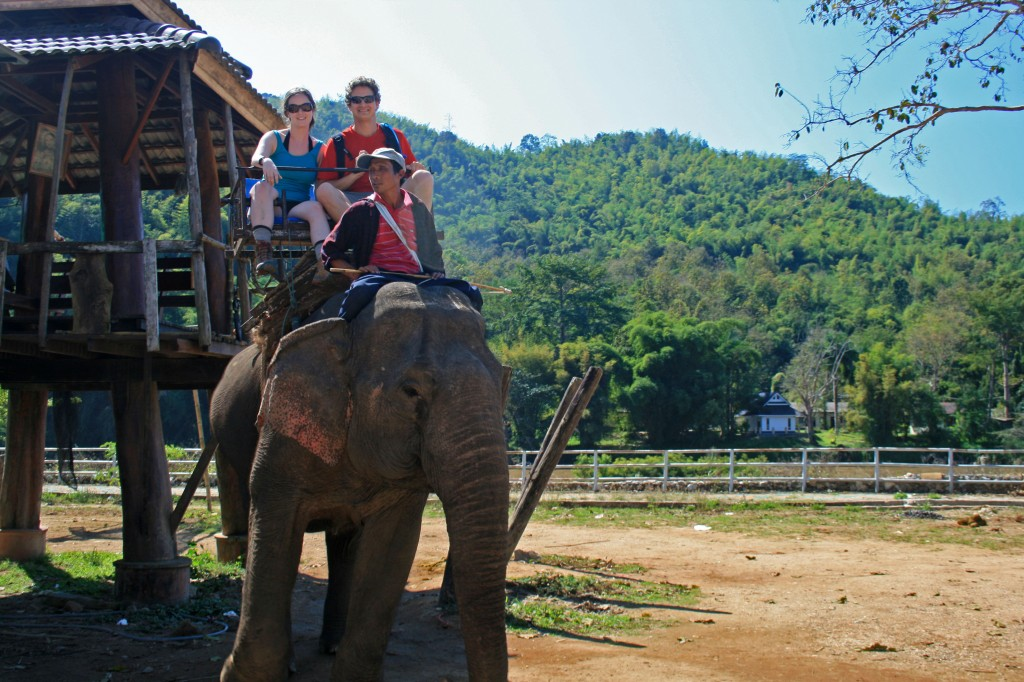 Chiang Rai Day Trek Elephant Ride