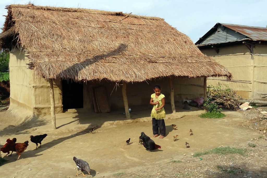 Nepali Girl Feeding Chickens, Sauraha