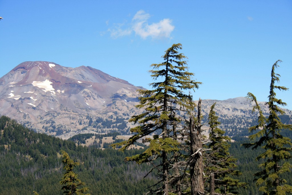 South Sister from Koosah
