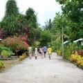 Raja Ampat Arborek Main Street