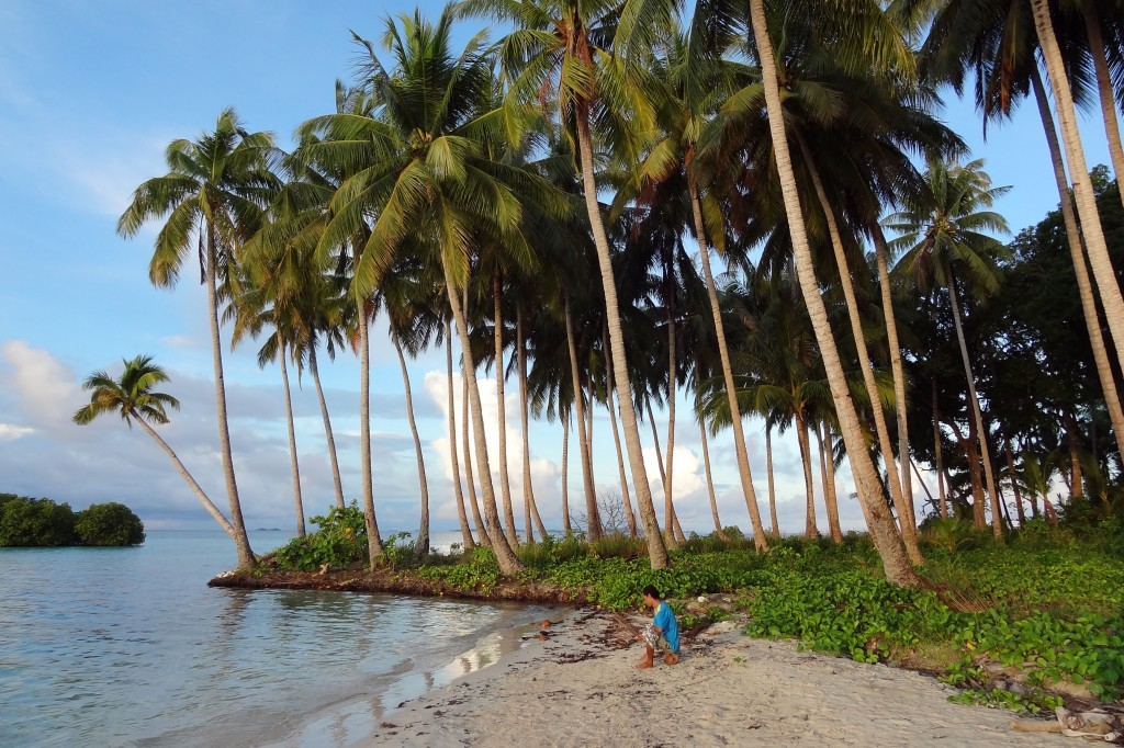 Raja Ampat Bat Island