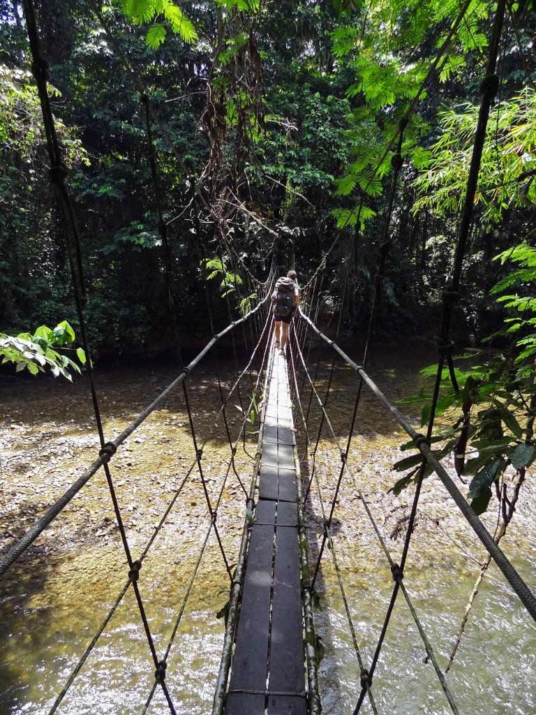 Malaysia, Gunung Mulu Bridge