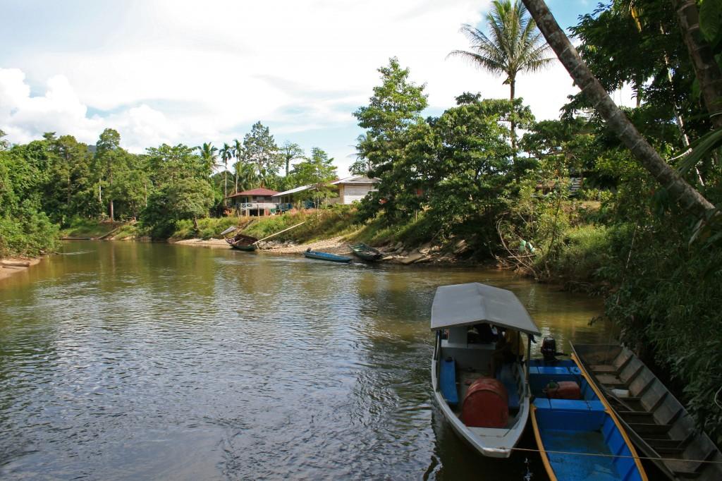 Malaysia, Mulu Guesthouse view