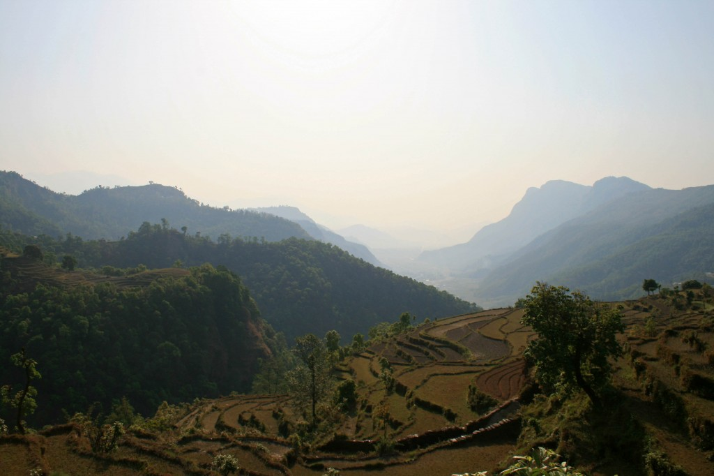 Nepal Phedi terraces