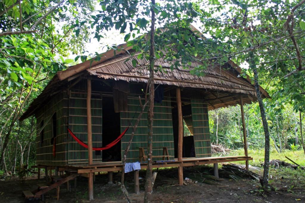 raja ampat biodiversity budget bungalow