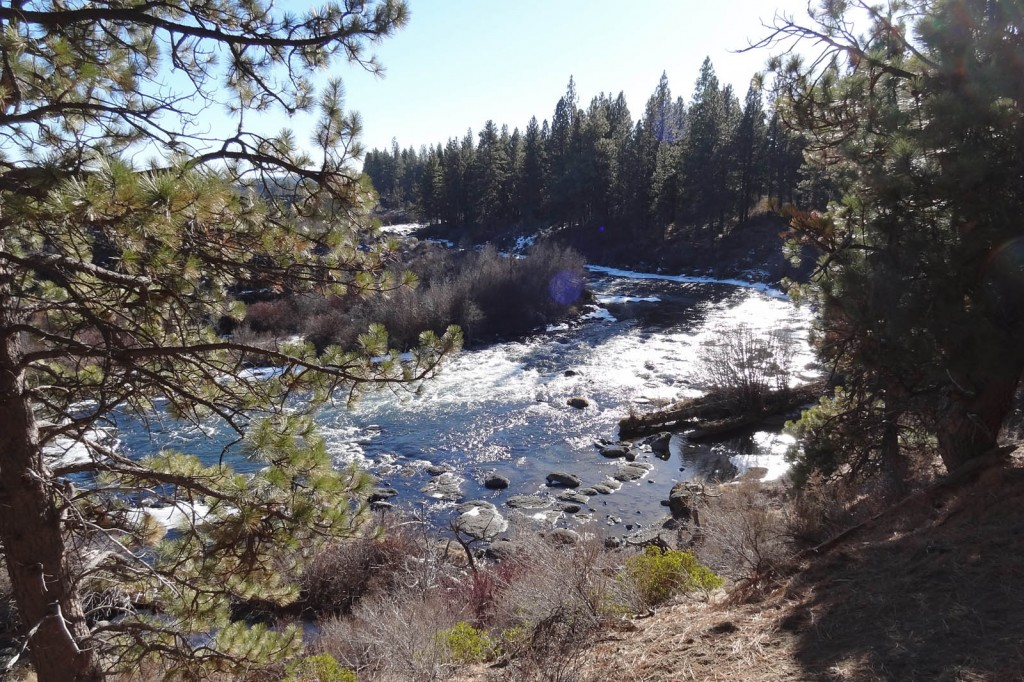 Deschutes River Trail Lava Island Falls to Aspen