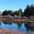 Deschutes River Trail header