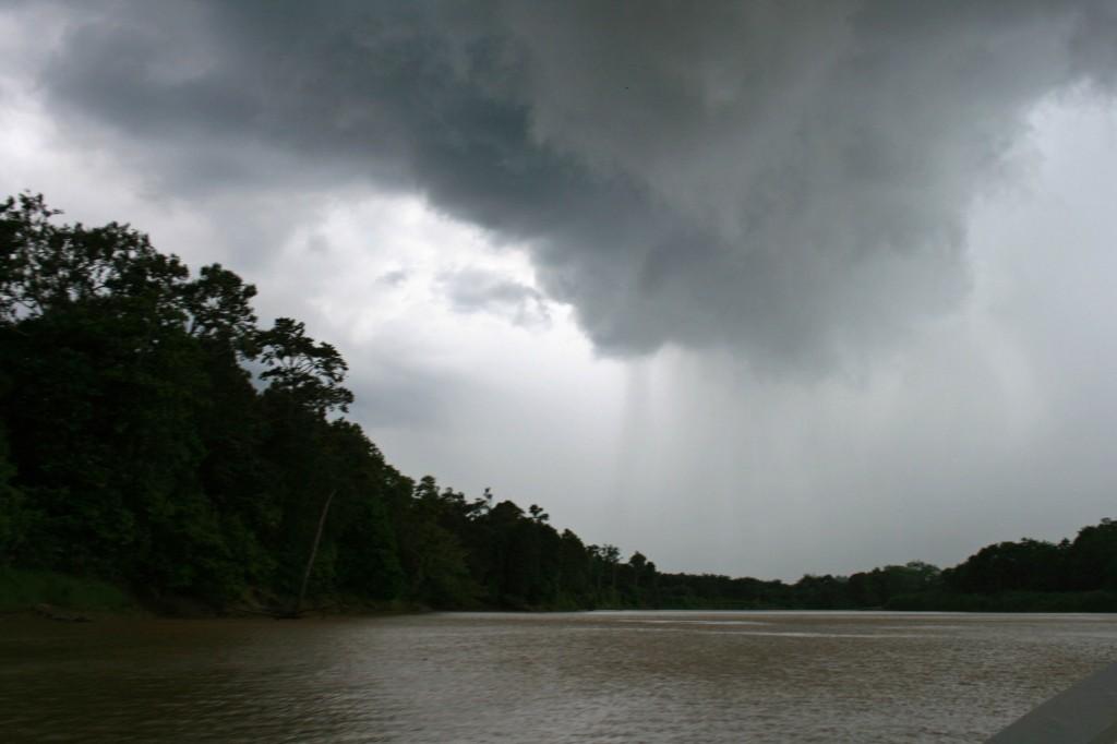 Kinabatangan Rain Storm