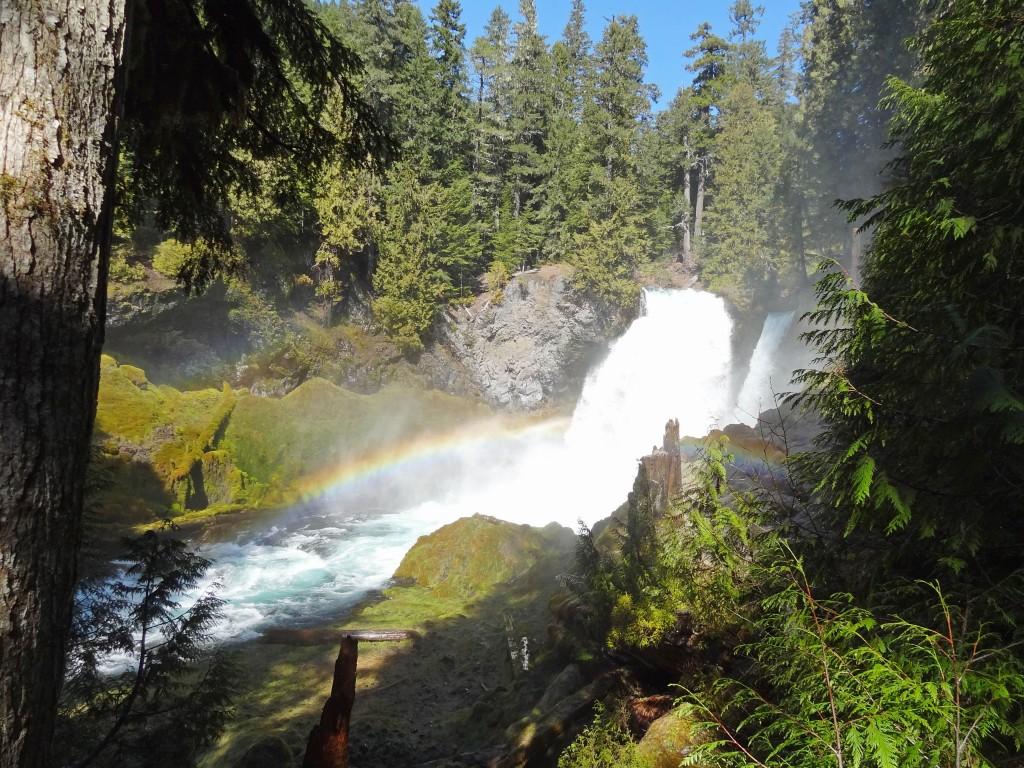 McKenzie_river_trail_sahalie_waterfall