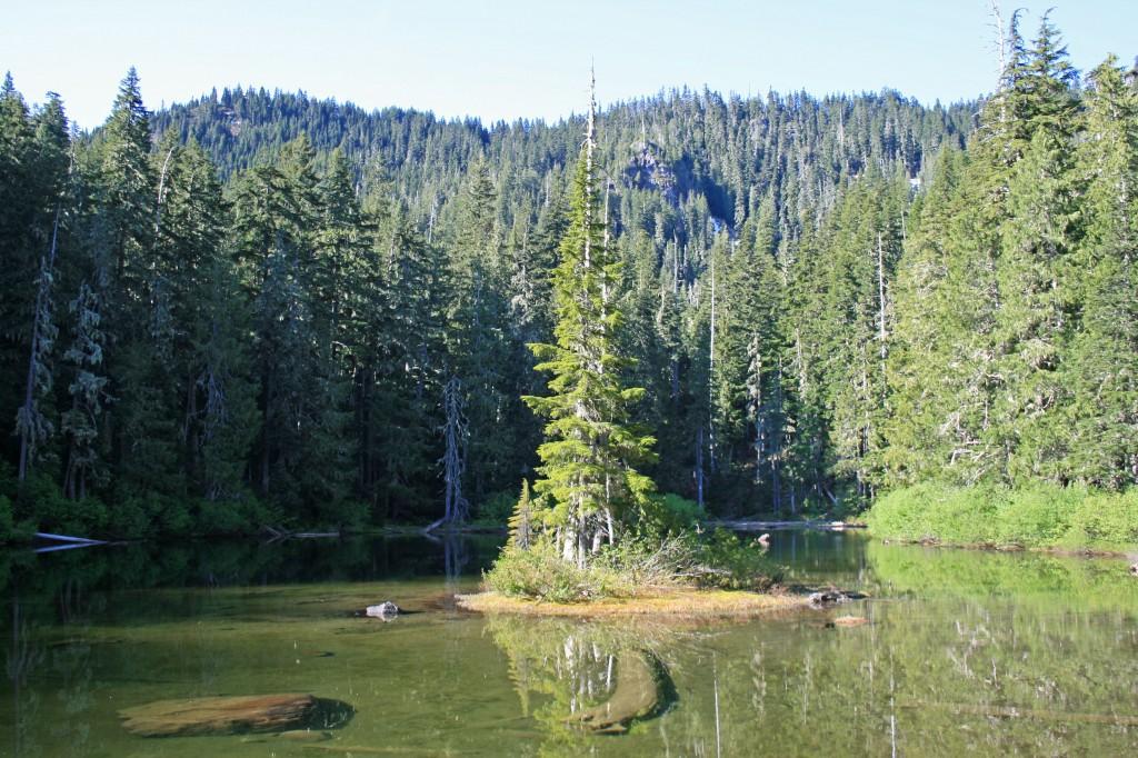 Big-slide-lake-island