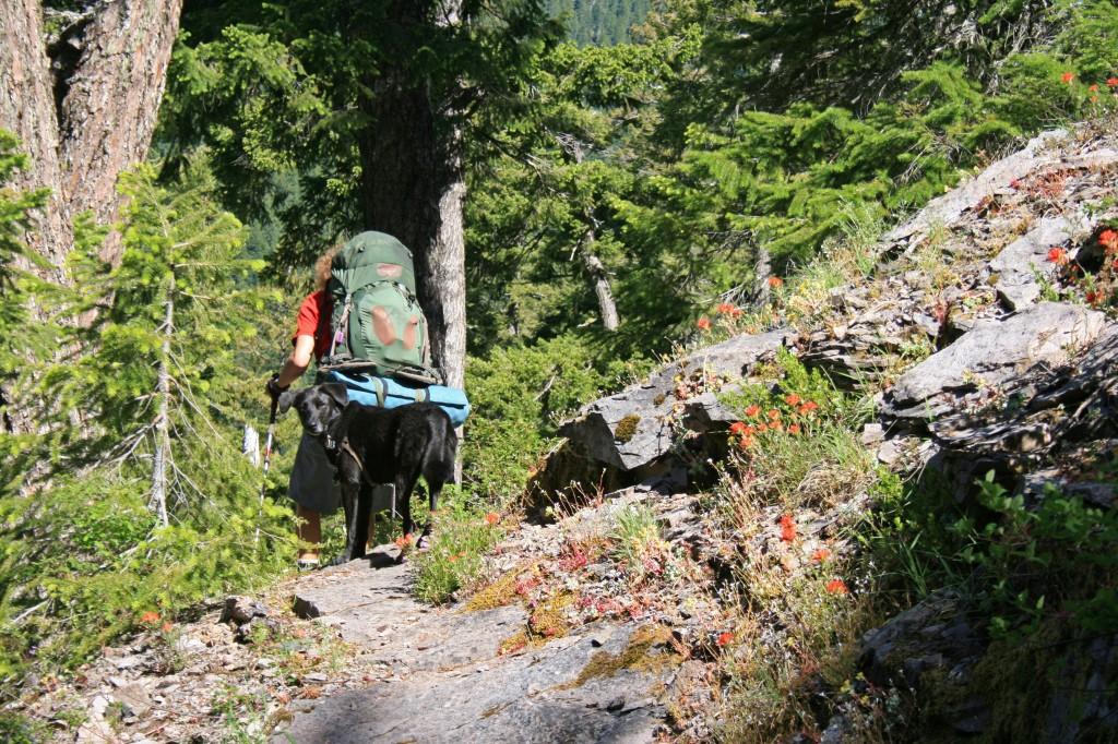 big-slide-lake-trail-sal